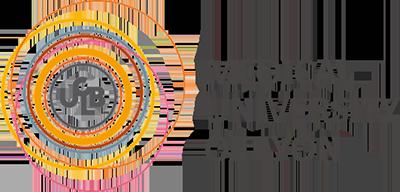 University of Lyon Logo