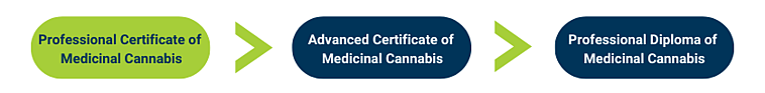 Medicinal Cannabis-3